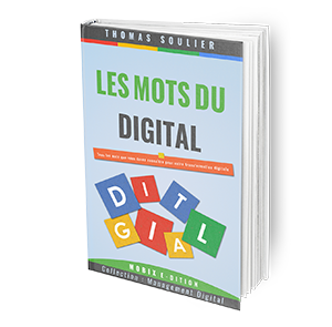 3D-BOOK-LES-MOTS-DE-LA-TRANSFORMATION-DIGITALE