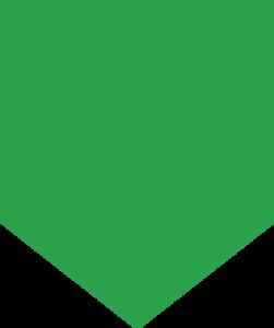 Green Shape - CV mobix